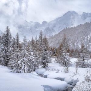 Fotokurs Winterzauber, Winter, Schnee