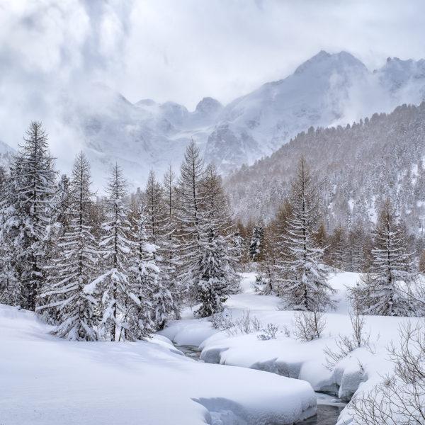 Fotokurs Winterzauber