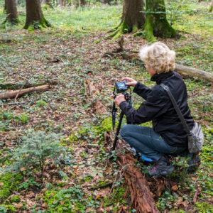 Making of Magischer Wald