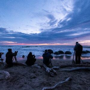 FotoReise Neuseeland – Südinsel